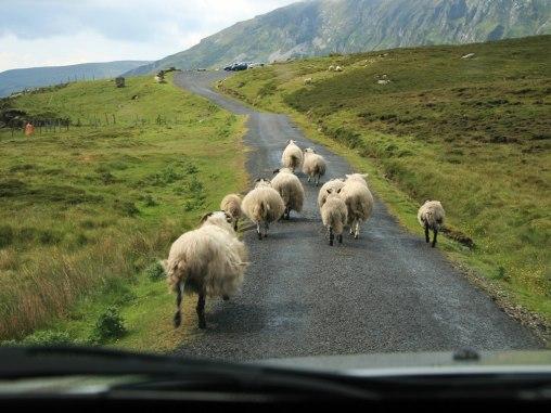cn_image.size_.ireland-rental-car-tips