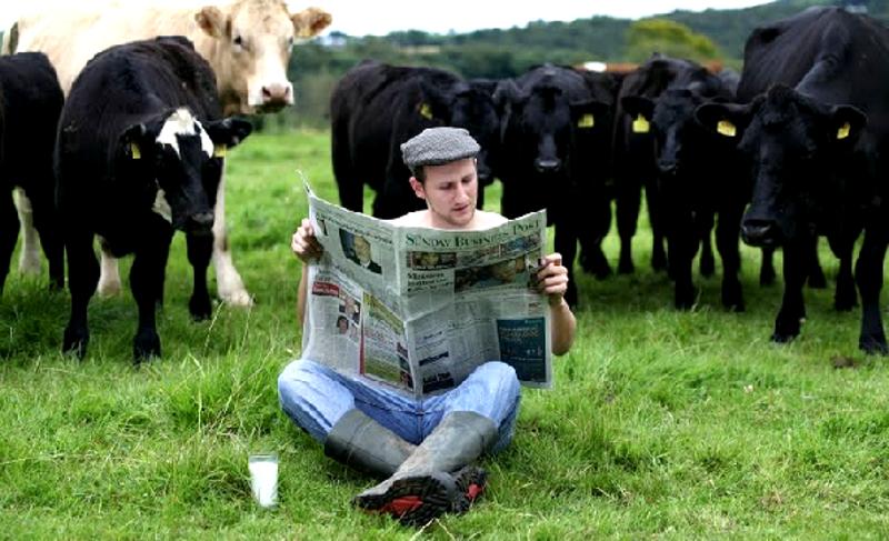 """Nozze Gay in Irlanda: i """"farmers"""" dicono sì"""