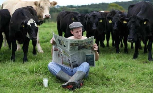 Nozze Gay in Irlanda: gli agricoltori dicono sì